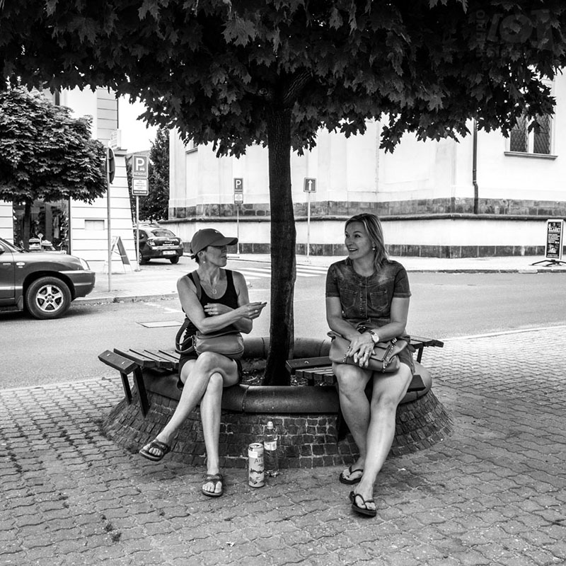 Dvě ženy pod stromem / Two women under a tree
